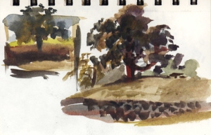 watercolor_trees_sept17