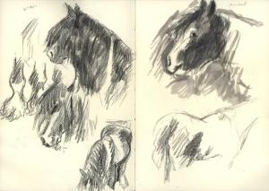 SF2014_gypsyhorses