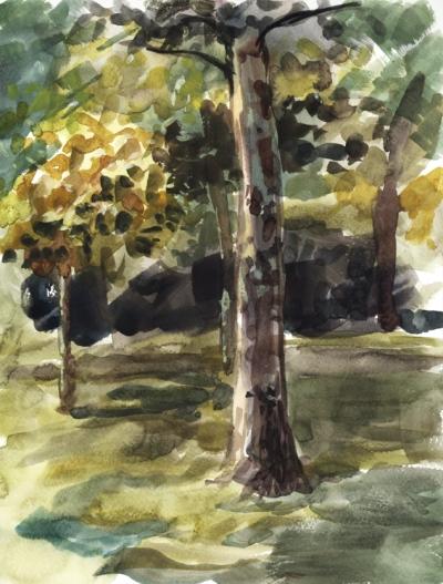 watercolor_arboretum