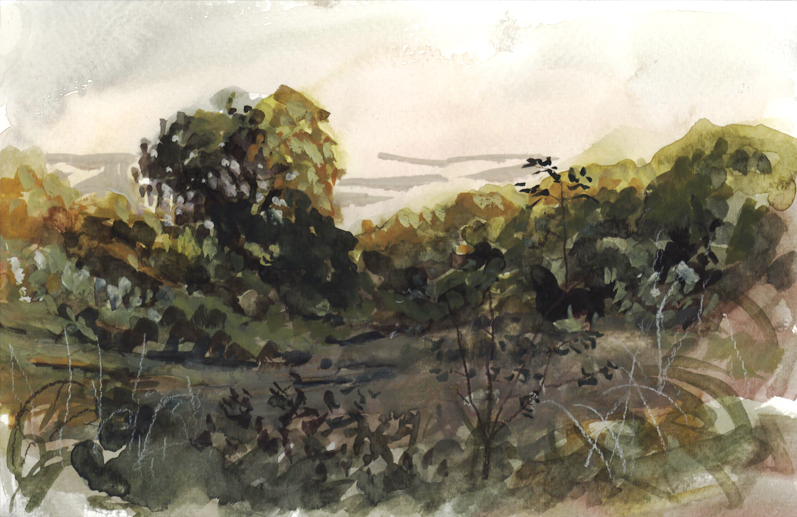 watercolor_field