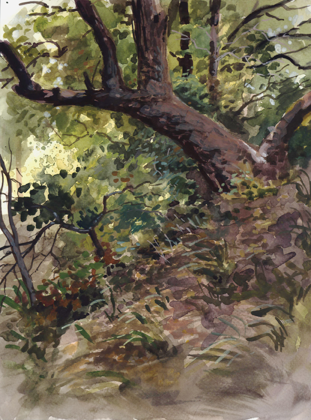 watercolor_trees_oct11