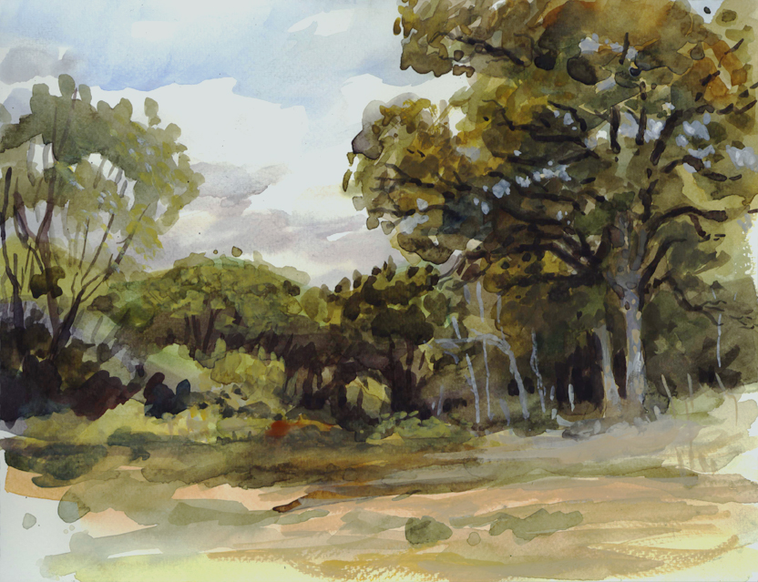watercolor_trees_oct2