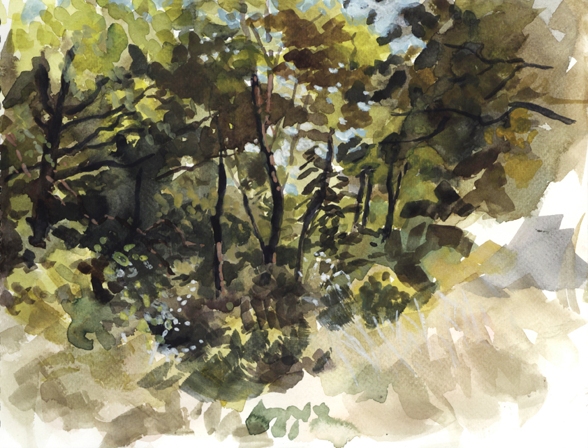 watercolor_trees_oct6