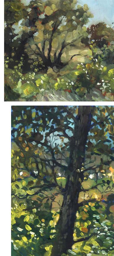 oil_backlit_trees2
