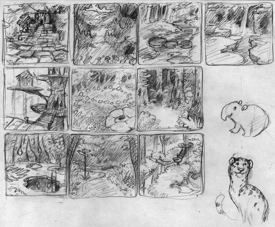 rainforest_sketches