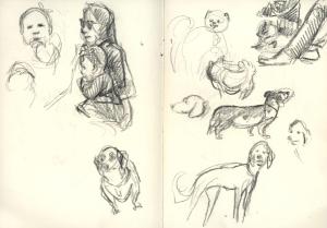 babydogs_sketch