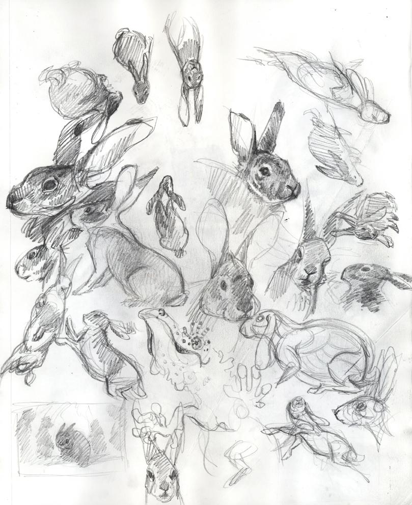 drawing u2013 page 2 u2013 jaimiewhitbreaddesign