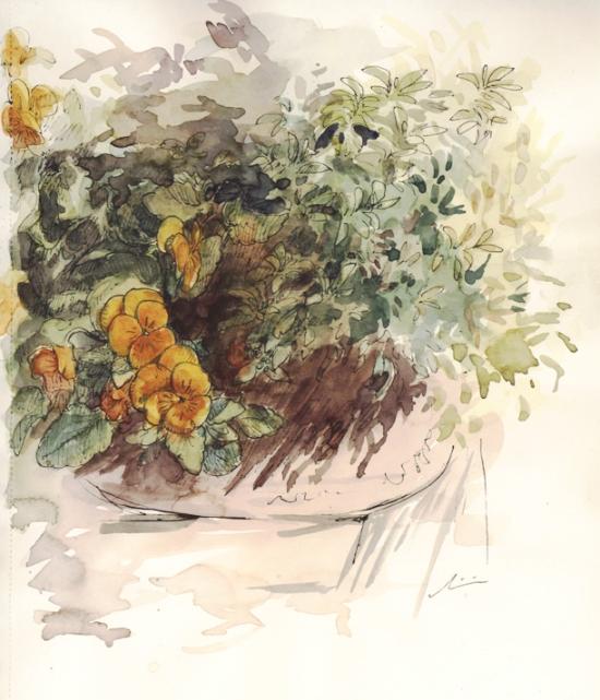 flowers_penandink