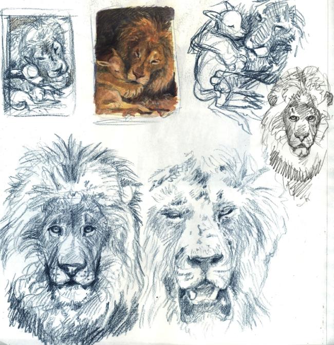 lionsketch