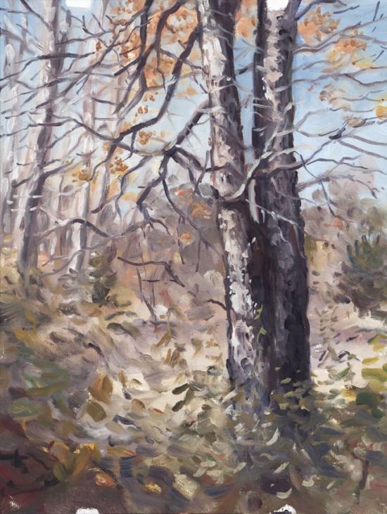 pleinair_tree_jan2015