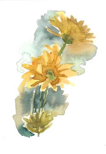 daisies_watercolor