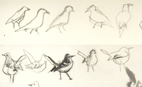 sketchbook_birds