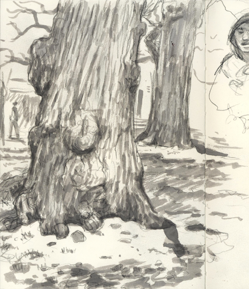 sketchbook_knobbytree