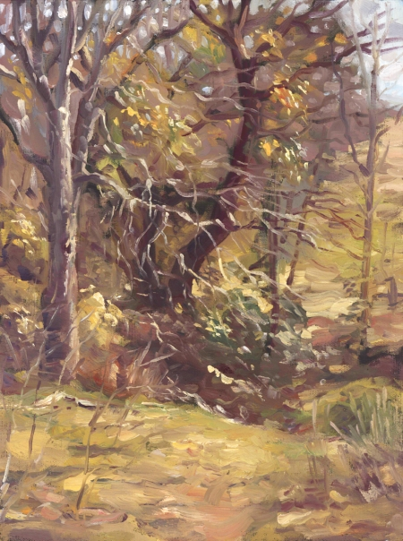 treesaftersnow