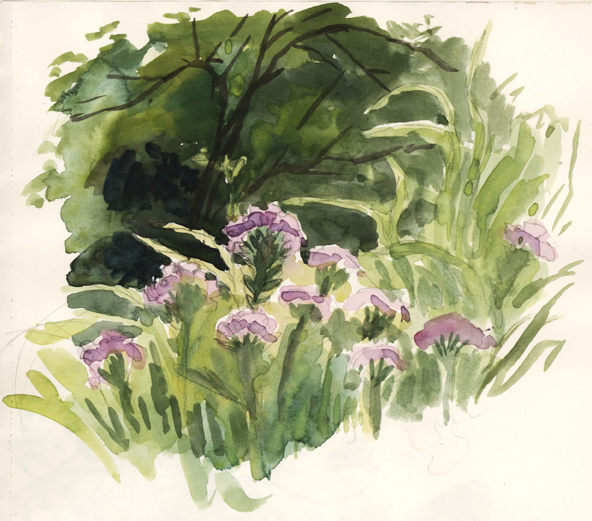 purpleflowers_watercolor_april15