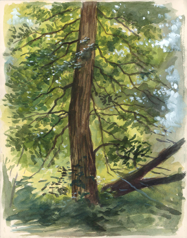 backlittree_watercolor_april15