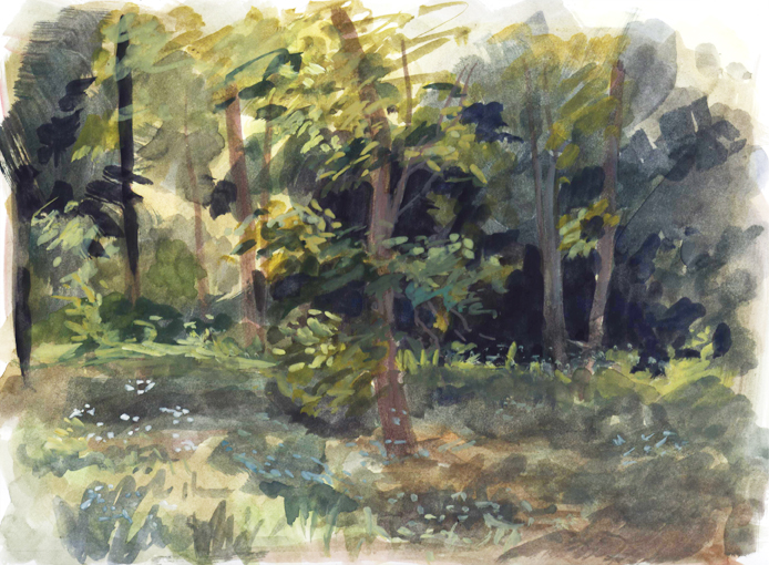 summertrees_watercolor_may15