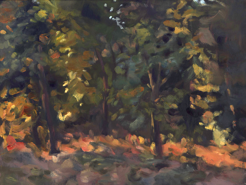 lightintrees_pleinair_July15