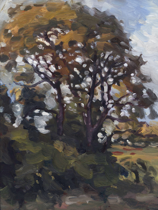 pleinair_tree_october15