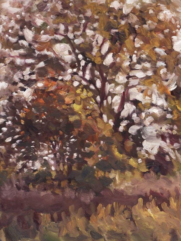 pleinair_treesinfield_october15