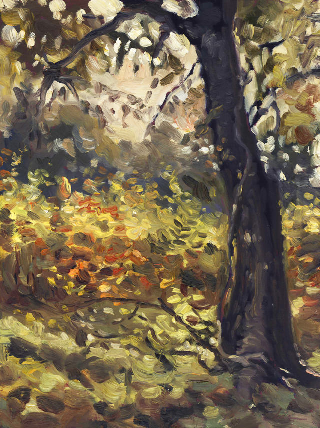 fallleavesundertree_pleinair_nov15