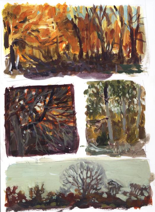 landscape_thumbnails