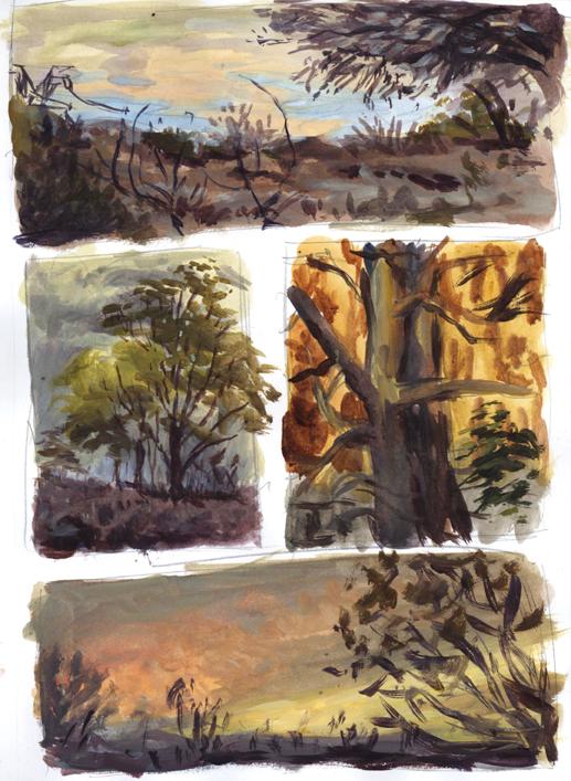 landscape_thumbnails2