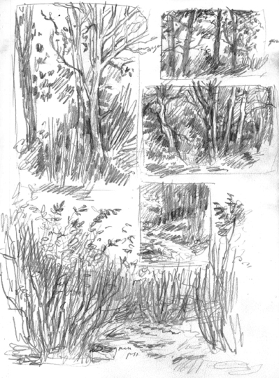 outdoor_studies_pencil_nov15
