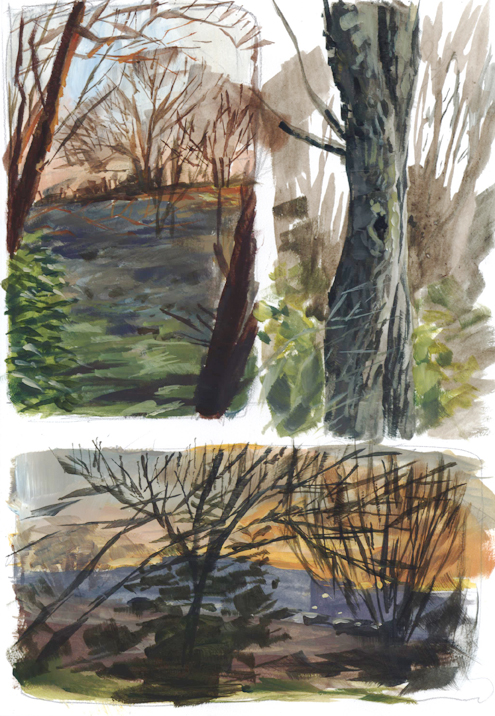 trees_dusk_jan16