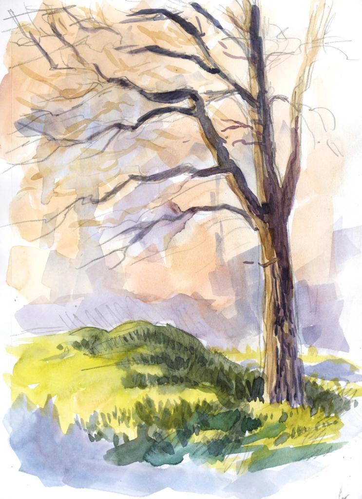 treeandhill_watercolor_feb16