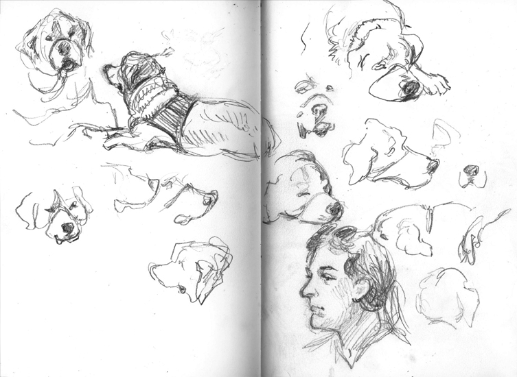 dogsketches_march16
