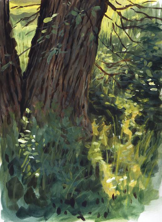 pleinair_grasstree_march16