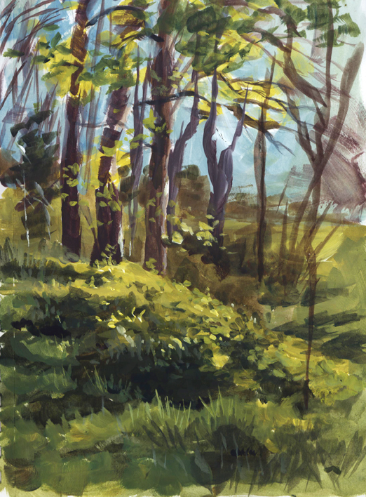 pleinair_grassywoods_march16