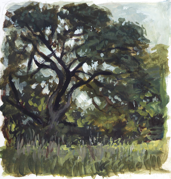 lonetree_pleinair_april16