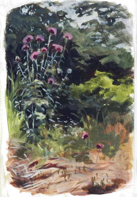 thistles_pleinair_may16