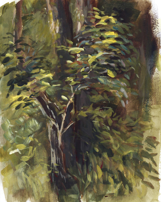 lightonleaves_pleinair_june16