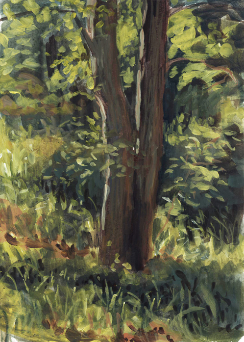 pleinair_tree_bouncelighting_june16