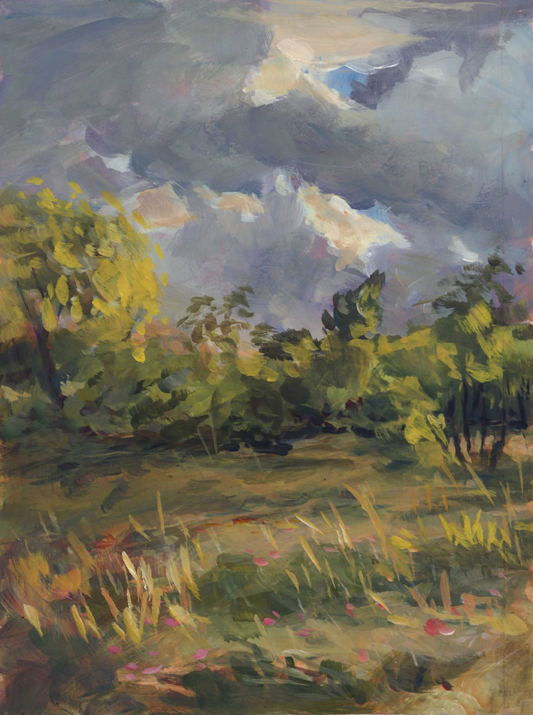 sunfield_pleinair_june16