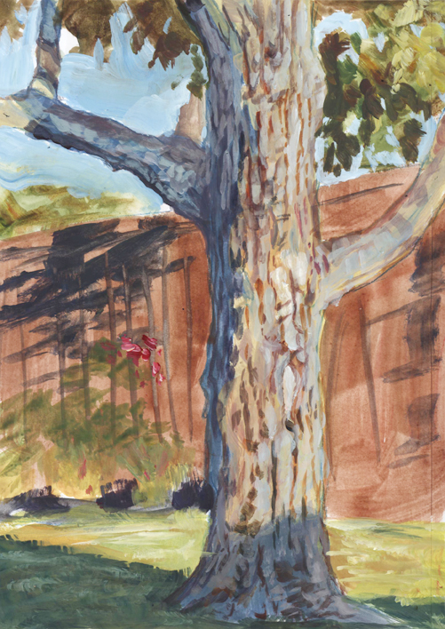 pleinair_august16_backyardtree